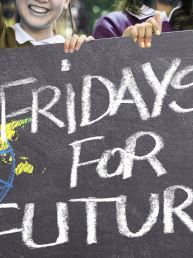 rheingold-Studie Fridays for Future-Demonstrationen